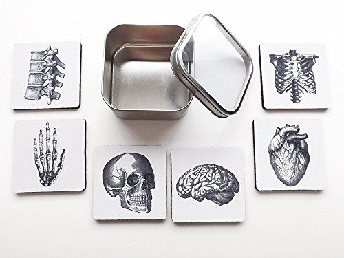 human Anatomy square Coasters Gift tin coasters neoprene brain skull anatomical heart skeleton medical student
