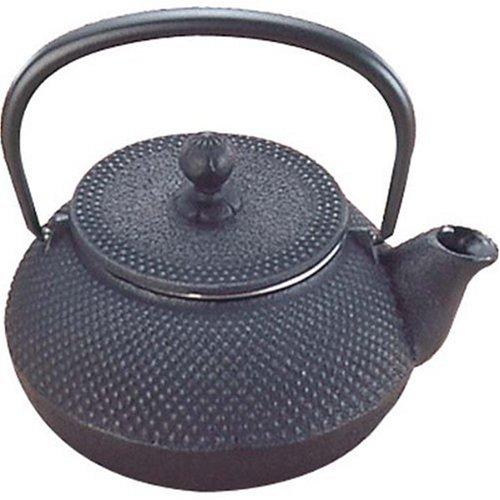 Nanbu Tekki Iron Tea Pot ARARE Type3 12001