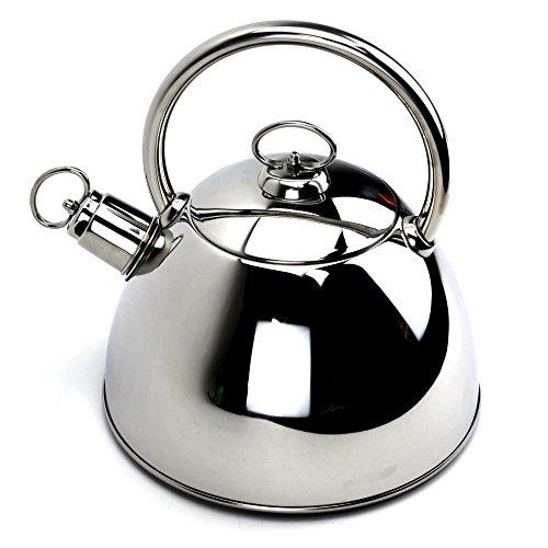 Tea KettleStainless Steel Teakettle with LidSilver