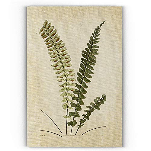 WEXFORD HOME Botanical Plate VIGallery Wrapped Canvas Wall Art 32x48 VI