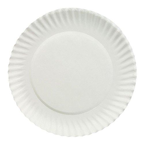 Dixie White 9 Economical Paper Plates 150 Plates 150 9 Plates