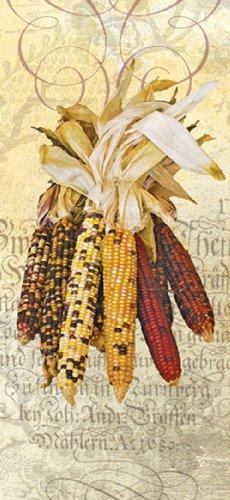 Paperproducts Design 35027 100-Percent Cotton KitchenBar Towel
