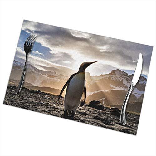 Heat-Resistant Placemats Set of 6 Dining Table Place Mats Penguin Placemat Non-Slip Washable
