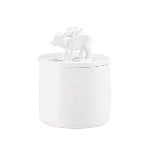 White Mason Jars Dolomite Flying Pig Lid Decorative Mason Jar Regular