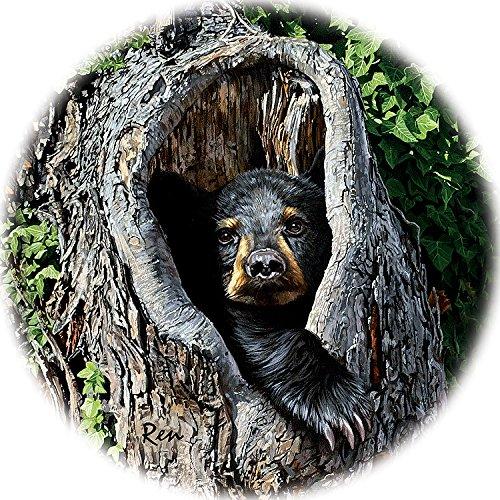 Cubby Hole - Black Bear Coasters by Jon Ren