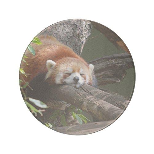 Zazzle Sleeping Red Panda Coaster