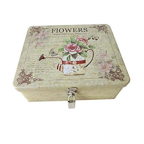 European Style Cosmetic Box Tin Box Tinplate Gift Box with Lock 2