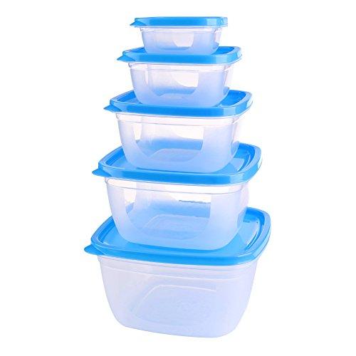 Zpet 5 PCS Transparent Food BPA-free Plastic Storage Containers Set with Lock Lids - Microwave Freezer safe Blue